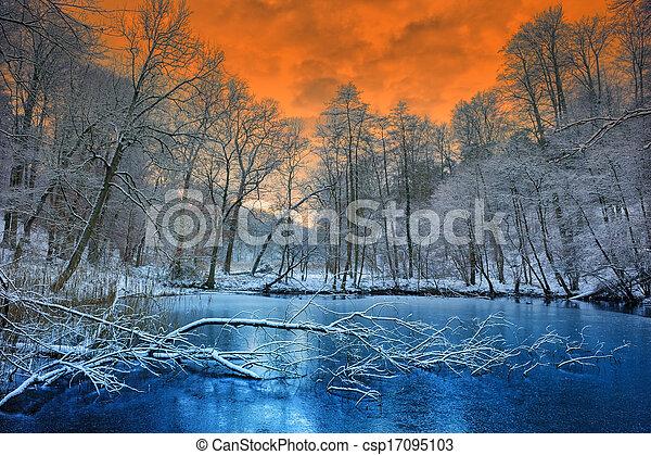 vinter, spektakulär, över, solnedgång, skog, apelsin - csp17095103