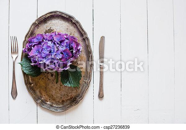 viola, ortensia - csp27236839
