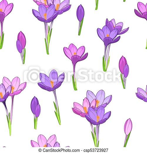 Violet Purple Crocus Flowers Seamless Pattern Crocus Saffron Purple