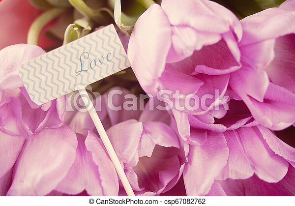 Violet tulips and note with word love. - csp67082762