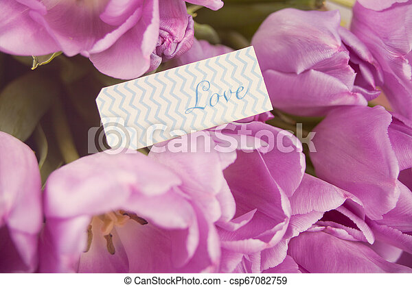 Violet tulips and note with word love. - csp67082759