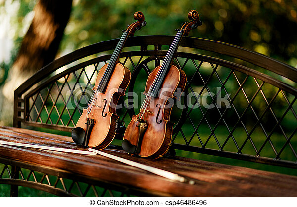 Violin music instrument of orchestra  Violins in the park on the bench