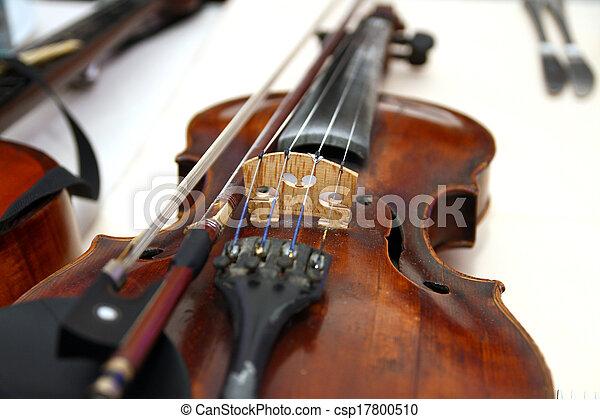violin  - csp17800510
