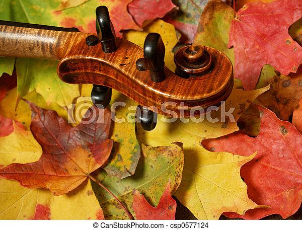 Violin Scroll, Fall - csp0577124