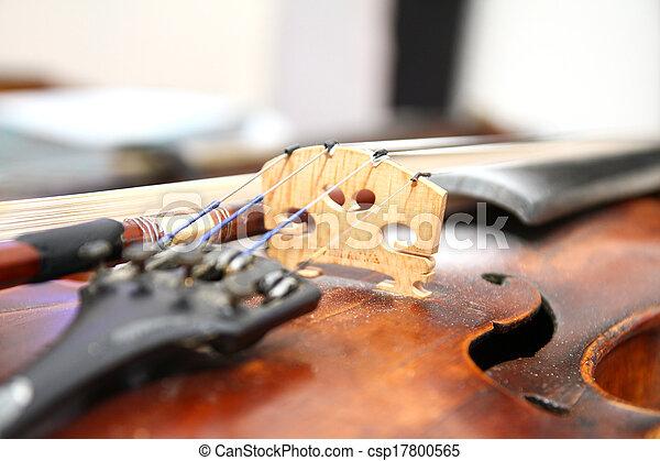 violin - csp17800565