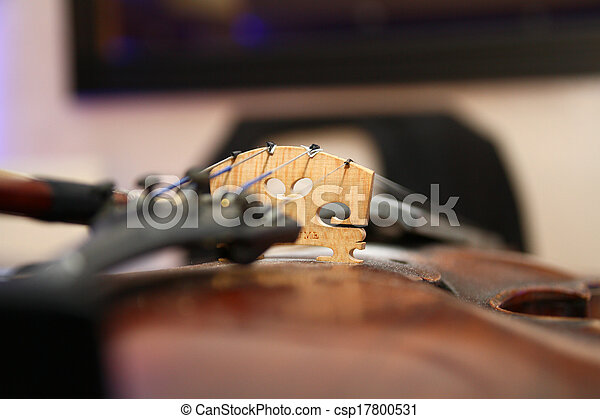 violin - csp17800531