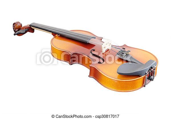 violoncello - csp30817017