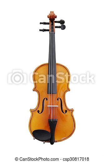 violoncello - csp30817018