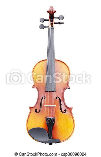violoncello - csp30098024
