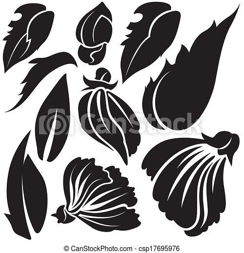 virág, alapismeretek - csp17695976