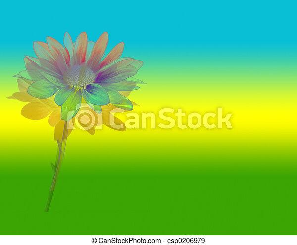 virág nagy - csp0206979