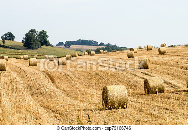 virton, haystacks, g?rouville, velden, platteland - csp73166746