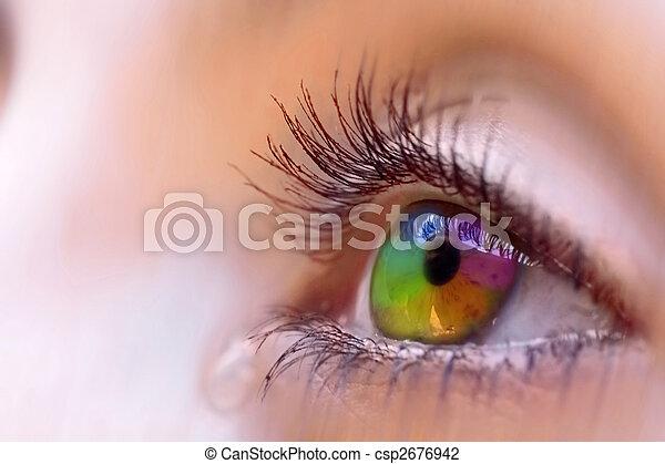 Vision - csp2676942