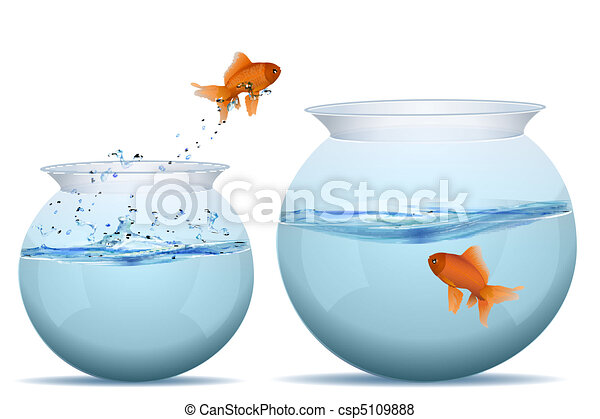 visje, springt, reservoir, een ander, een - csp5109888