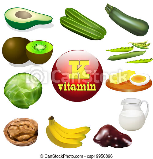 vitamin K plant and animal products - csp19950896