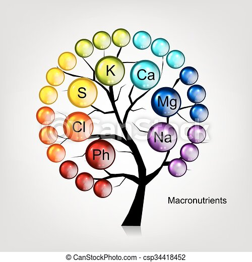 Vitamins tree concept for your design - csp34418452