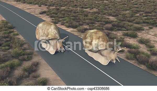 """Résultat de recherche d'images pour """"photo escargots sur une route"""""""
