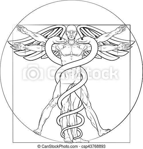 Vitruvian man caduceus. Caduceus medical symbol vitruvian man ...