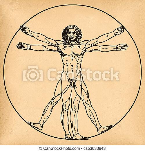 Vitruvian man on old paper background - csp3833943