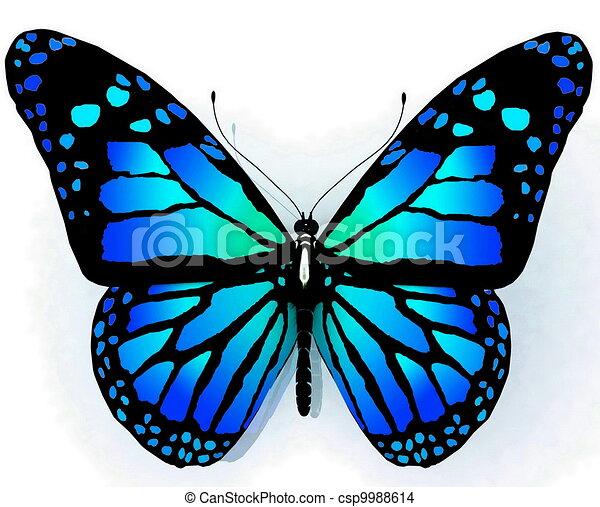 vlinder, blauwe , geïsoleerde kleur - csp9988614