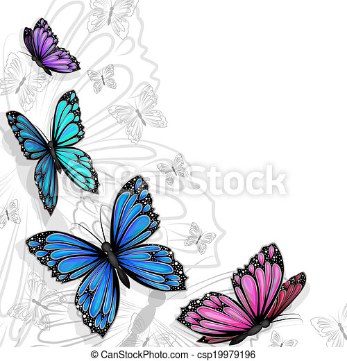 vlinder, kaart - csp19979196