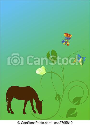 vlinder, paarde - csp3795812