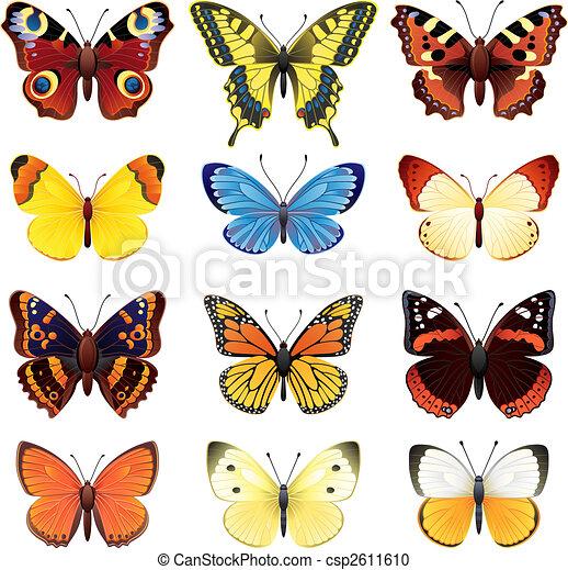 vlinder, set - csp2611610