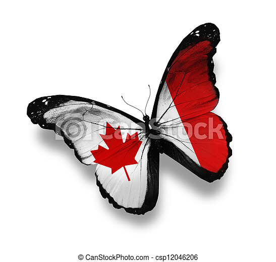vlinder, vlag, witte , vrijstaand, canadees - csp12046206