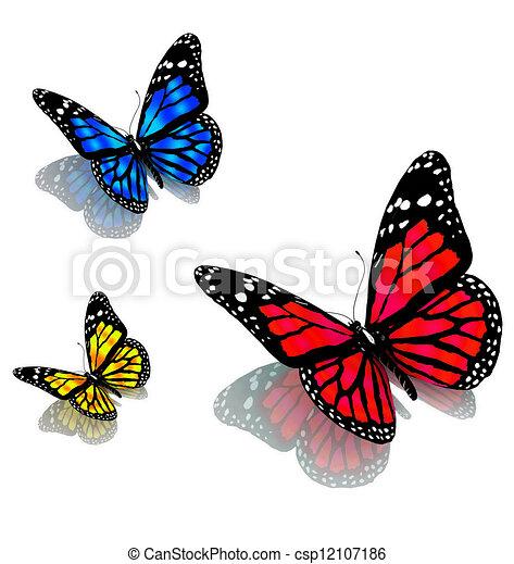 vlinder, witte , drie - csp12107186