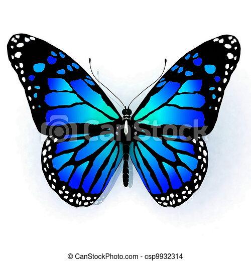 vlinder, witte , vrijstaand - csp9932314
