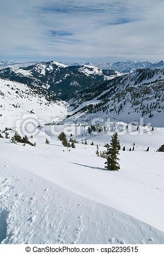 Winter vlley - csp2239515