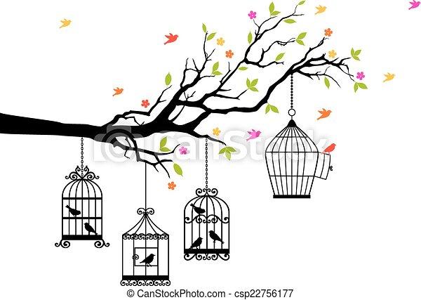 vogels, kosteloos, vector, birdcages - csp22756177