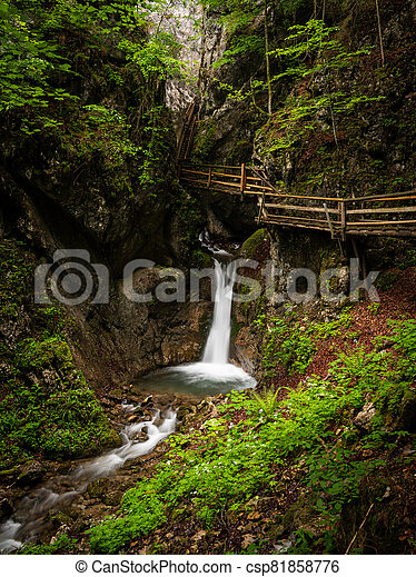 Vogelsang Gorge in Upper Austria on a cloudy day in summer - csp81858776