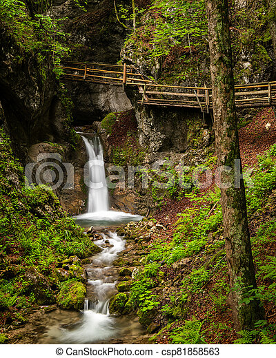 Vogelsang Gorge in Upper Austria on a cloudy day in summer - csp81858563