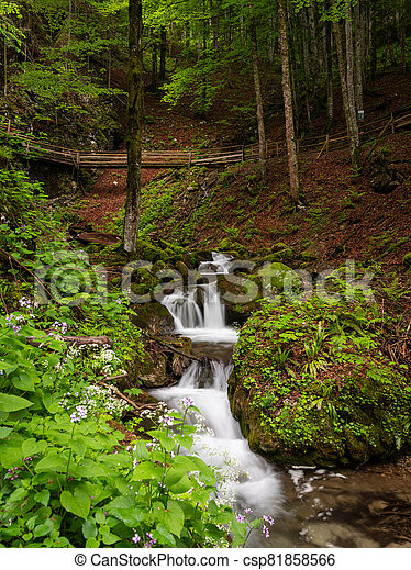Vogelsang Gorge in Upper Austria on a cloudy day in summer - csp81858566