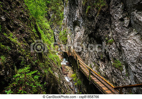 Vogelsang Gorge in Upper Austria on a cloudy day in summer - csp81858766