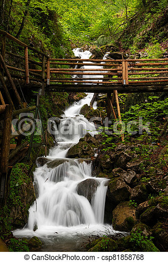 Vogelsang Gorge in Upper Austria on a cloudy day in summer - csp81858768
