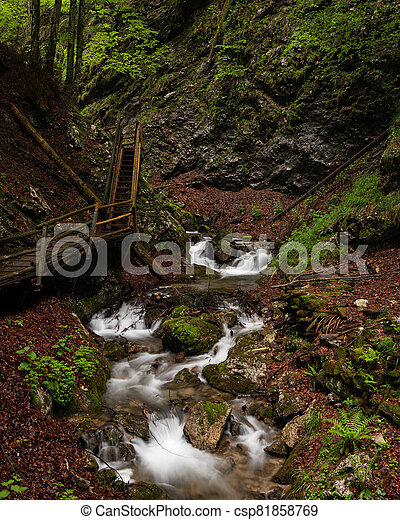Vogelsang Gorge in Upper Austria on a cloudy day in summer - csp81858769