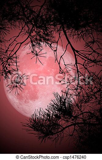 volle maan, nacht - csp1476240
