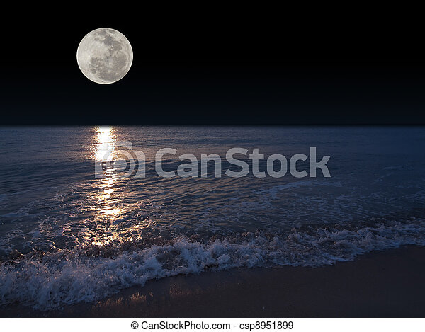 volle maan - csp8951899