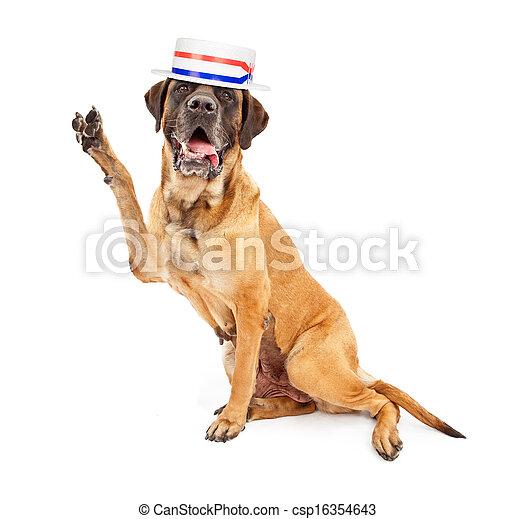 vote, politique, encourageant, mastiff, chien - csp16354643