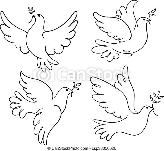 vrede, duif - csp33050620