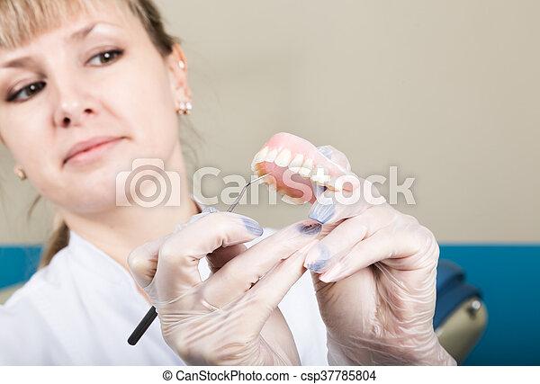 vrouwlijk, dentaal, casts., tandarts, ontvangst, vasthouden, dentist., was - csp37785804