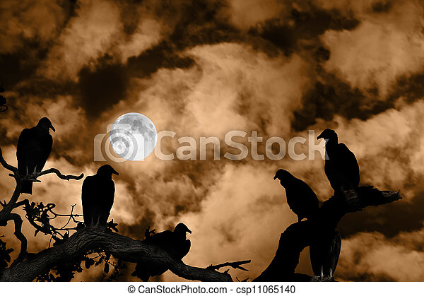 Vultures silhouetted against a full moon and spooky orange sky - csp11065140
