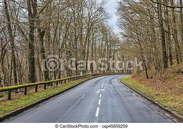 vuoto, foresta, strada - csp45659259