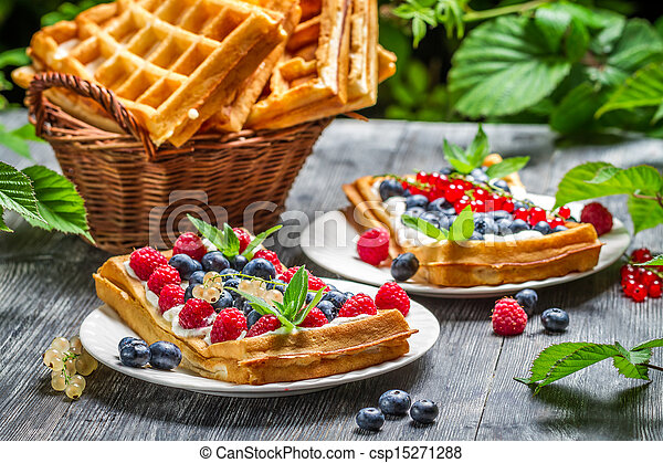 Waffles with fresh berry fruit and mint leaf - csp15271288