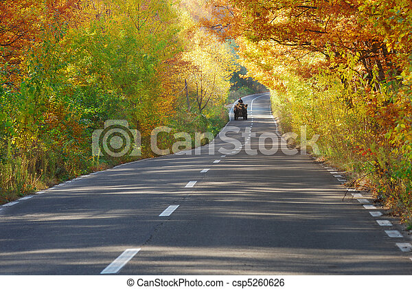 wagon on road on fall - csp5260626