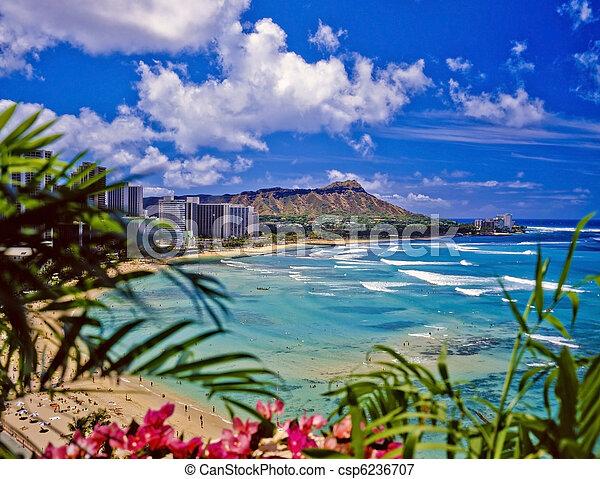 waikiki beach and diamond head - csp6236707
