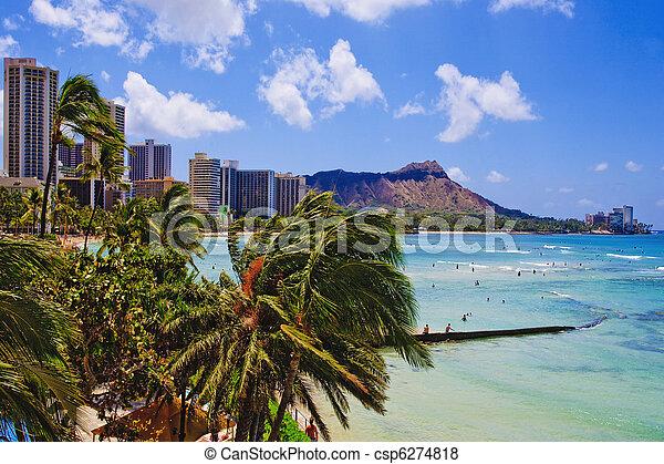 waikiki beach - csp6274818