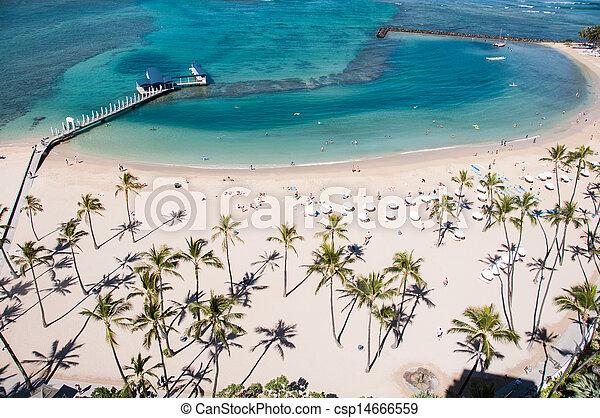 Waikiki Beach - csp14666559